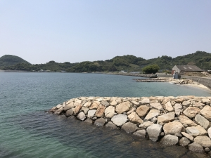 興居島の海